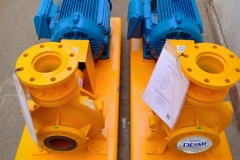 DESMI Pump With WEG Electric Motor
